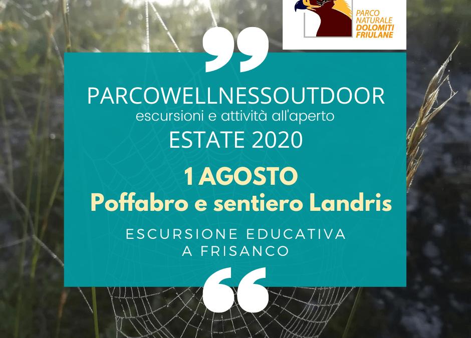 EVENTO ParcoWellnessOutdoor 1 agosto 2020